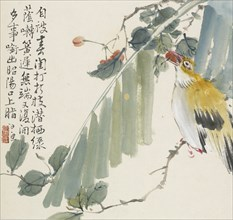 Golden oriole with a cherry in its mouth, 1857. Artist: Jin Yuan.