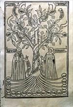 Engraving of a tree in the work 'Arbor Scientiae' (Science Tree) copy printed in Barcelona in 150?