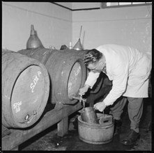 Man drawing a sample of beer from a barrel, Burton upon Trent, Staffordshire, 1965-1968