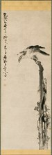 Eagle on a Tree Trunk, 1755. Creator: Huang Shen (Chinese, 1687-1772).
