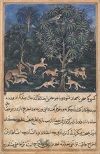 Page from Tales of a Parrot (Tuti-nama): Fifth night: The parrot mother cautions..., c. 1560. Creator: Daswanth (Indian).