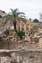 Libya, Cyrene, Sanctuary of Apollo, 2007. Creator: Ethel Davies.