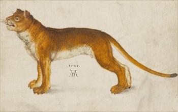 Lioness, 1521. Creator: Dürer, Albrecht