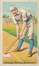 Strauss, Batter, Milwaukee, from the Gold Coin series