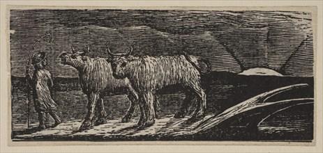 Unyok'd Heifers, Loitering Homeward, from Thornton's Pastorals of Virgil, 1821. Creator: William Blake.