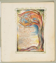 Songs of Innocence and of Experience: The Blossom: Merry Merry Sparrow, ca. 1825. Creator: William Blake.