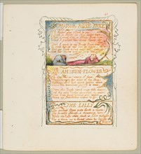 Songs of Innocence and of Experience: My Pretty Rose Tree, Ah! Sun-Flower, The Lily, ca. 1825. Creator: William Blake.