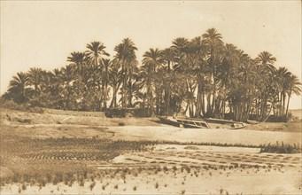 Vue de l'ile d'Eléphantine, en face d'Assouan, 1849-50.