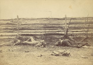 View in the Field, On the West Side of the Hagerstown Road, After the Battle of Antietam, Maryland, September 1862, 1862.