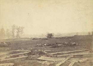 View on the Battlefield of Antietam, September 1862, 1862.
