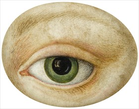 Eye, Early 19th cen.. Creator: Anonymous.