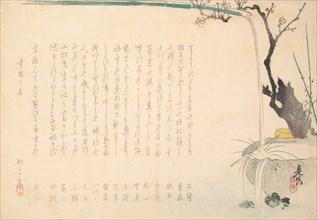 Surimono, ca. 1860., ca. 1860. Creator: Shibata Zeshin.