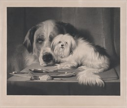 The Lion-Dog of Malta--The Last of His Tribe, 1844.