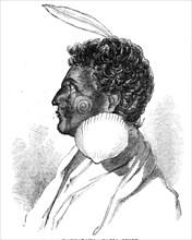 Rauparaha - Kafia Chief