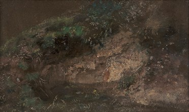 Undergrowth;A Bank with Undergrowth, ca. 1821.