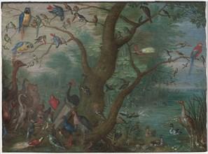 Concert of Birds, 1660/1670.