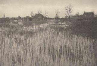 A Rushy Shore, 1886.