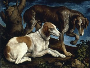 Two hunting dogs, 1548-1549. Found in the collection of Musée du Louvre, Paris.