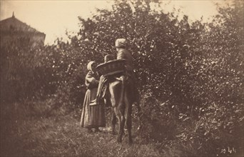 Two Women with Donkey, late 1870s.