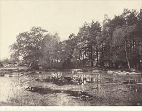 Marsh at Piat (Belle-Croix Plateau), c. 1863.