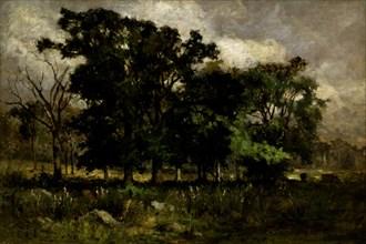 Tree Landscape, 1877.