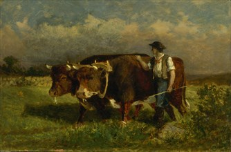 Untitled (man with two oxen), 1869.