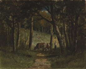 Untitled (cows on path in forest), 1883.