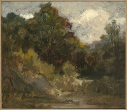 Landscape (trees), n.d.