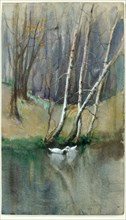 Untitled (Wood Scene with Birch Trees and Ducks), n.d.