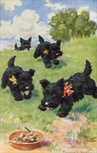 A Good Time Ahead, 1930s. Scottie dogs with ribbons.