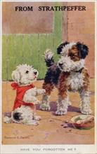 Have you forgotten me?, 1934. Souvenir of Strathpeffer in Scotland.