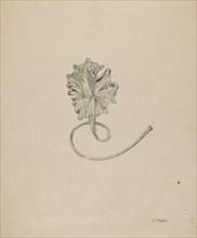Flower (Lily), c. 1937. Creator: Grace Halpin.
