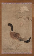 Drake and lotus flowers, Yuan dynasty, 1279-1368. Creator: Unknown.