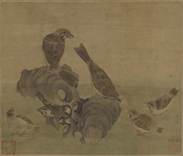 Sparrows feeding their young, Ming or Qing dynasty, (17th century?). Creator: Unknown.