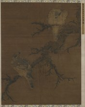 Two Hawks on a Barren Bough, Ming dynasty, 16th century. Creator: Unknown.