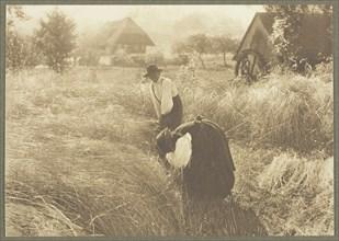Early Morn, 1894. Creator: Alfred Stieglitz.