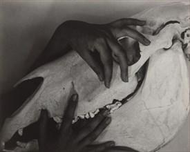 Georgia O'Keeffe - Hands and Horse Skull, 1931. Creator: Alfred Stieglitz.