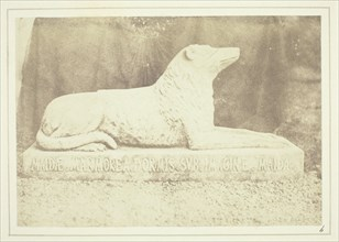 Effigy of Sir W. Scott's favourite dog Maida, by the side of the hall door at Abbotsford, 1844. Creator: William Henry Fox Talbot.