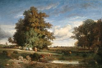 The Marsh, 1840. Creator: Constant Troyon.