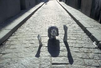Moulage de la tête et des mains de Johnny Hallyday