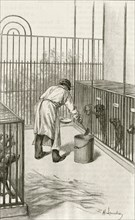 Laboratory animals at the Institut Pasteur, Paris, used during research ion hydrophobia (Rabies):  Drilling into  the brain rabbit.  Engraving, Pa;ris, 1873.