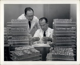Apr. 04, 2012 - The National Foundation for Infantile Paralysis -120 Broadway New York 5, N.Y. October 7, 1954. Virus Research Laboratory, Municipal Hospital Pittsburgh, Pa.. Dr. Jonas E. Salk, discov...