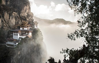 Tigers Nest Monastery (Paro Taktsang) also known as Taktsang Palphug Monastery, in Paro Valley, Bhutan. Taken at sunrise.