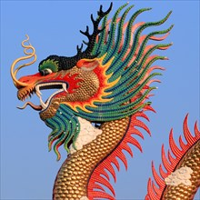 closeup of the golden Chinese dragon