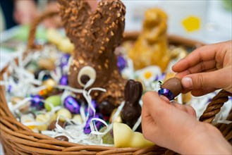hands of a child unwrap a chocolate candy egg with a large Easter egg basket in the background