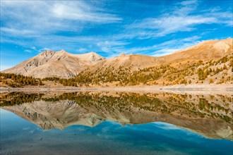 France - Provence - Haut Verdon - Mont Pelat is reflected in Lac Allos.