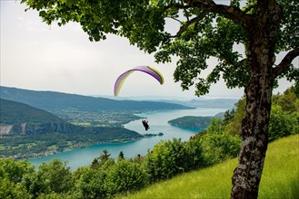 Paragliders with parapente jumping of the Col de Forclaz near Annecy in French Alps, in France.