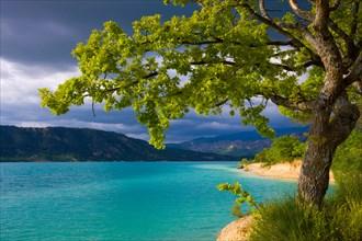 Lac de Sainte Croix, France, Europe, Provence, Alpes-de-Haute-Provence, lake, sea, reservoir, shore, trees, oak, clouds, thunder