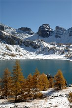 Lake Allos or Lac d'Allos, European Larches, Larix decidua, Snow-Covered Mountains and Winter Landscape, Mercantour National Park, French Alps