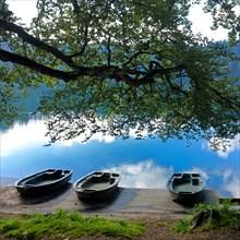 Lake Pavin, Puy de Dome department, Auvergne-Rhone-Alpes, France